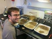 Lab Assistant Patrick sorting excavated woodrat midden sediments.