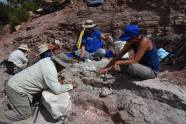 Excavation with NHMU, MoM, and BLM