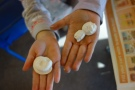 Students holding plaster casts of invertebrate marine fossils at the San Juan County Library craft afternoon